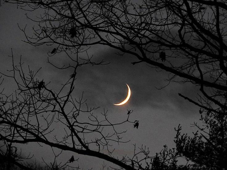 Waxing Crescent Moon on November 17th 2020