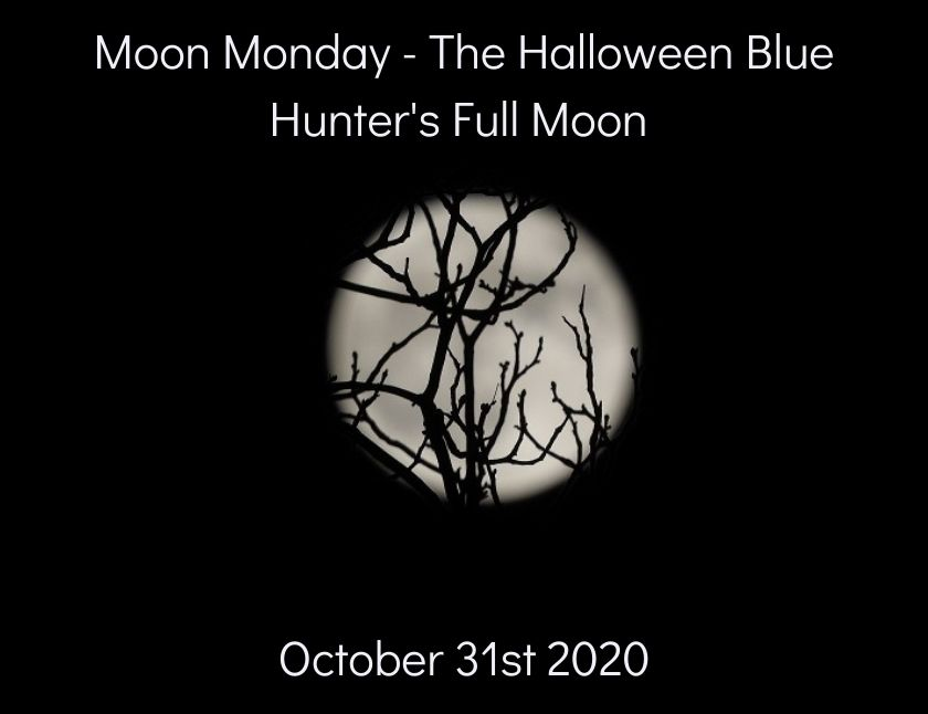 Moon Monday - third set of the Halloween Blue Hunter's Full Moon blog thumbnail