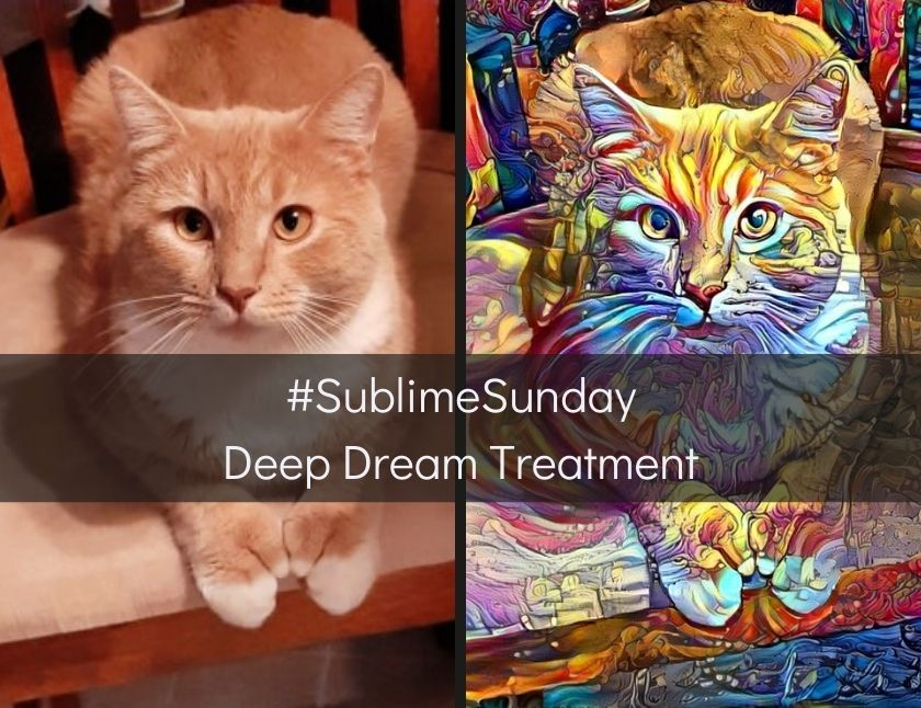 SublimeSunday - Deep Dream Treatment blog thumbnail