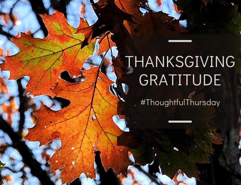 ThoughtfulThursday Thanksgiving Gratitude blog thumbnail