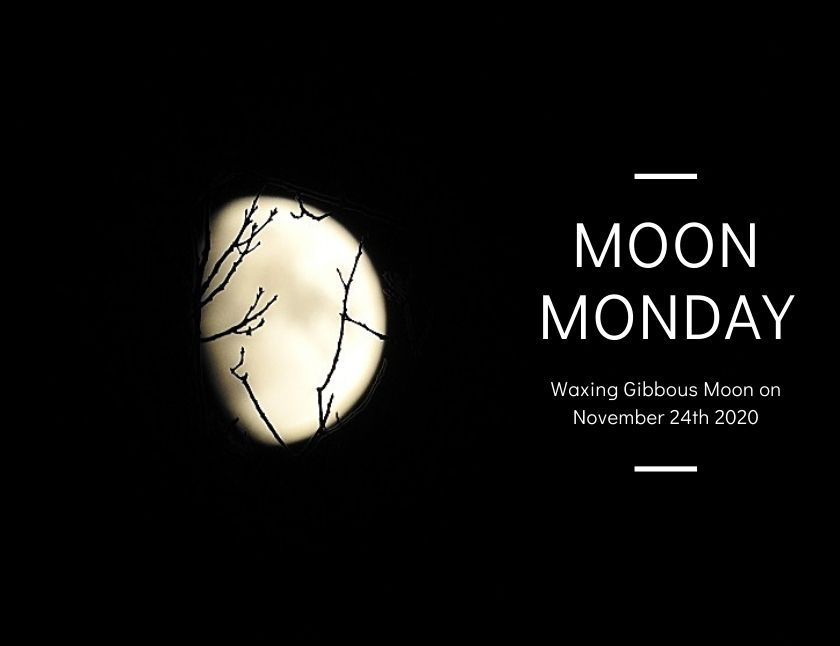 Waxing Gibbous Moon on November 24th 2020 blog thumbnail
