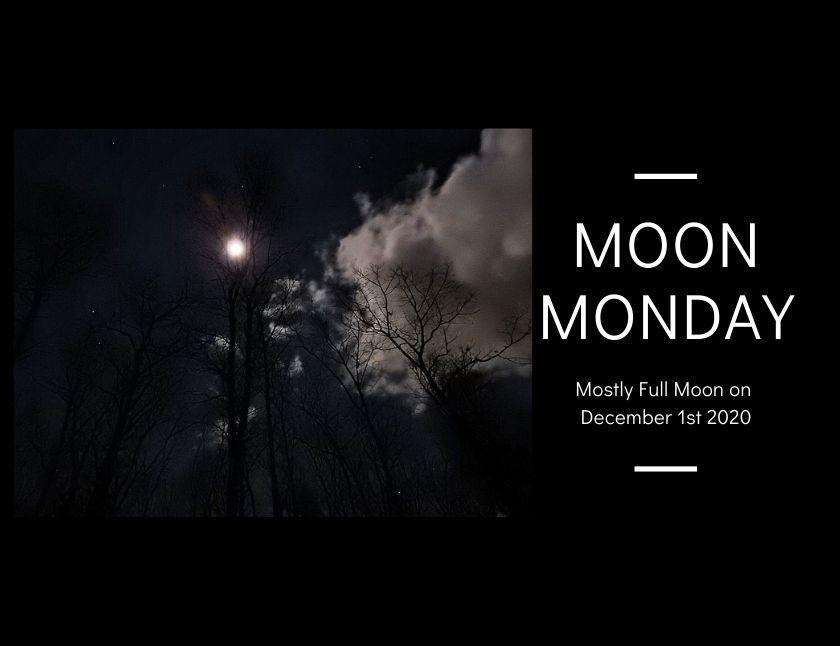 Mostly Full Moon on December 1st 2020 blog thumbnail
