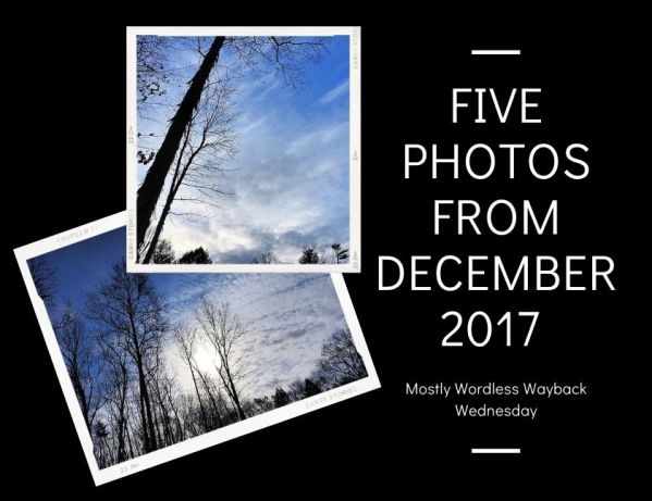 Mostly Wordless Wayback Wednesday Five Photos from December 2017 blog thumbnail