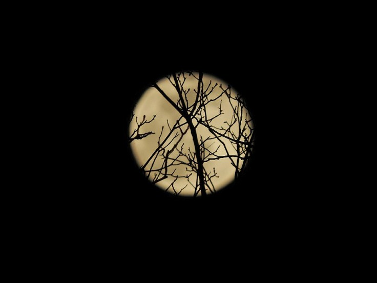 Full Snow Moon on February 27th