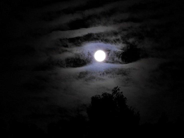 Moon Monday - The Full Thunder Moon July 9th, 2017