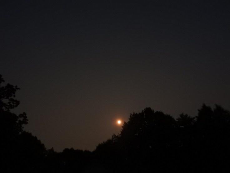 Waxing Gibbous Moon, July 20 2021