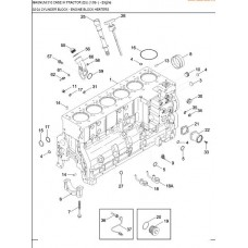 Case IH MX310 Magnum Engine Parts Manual