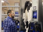 Maquinaria para la producción animal, la mecanización de la ganadería