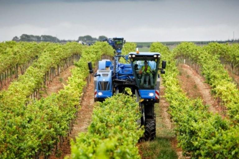 Maquinaria para viñedo. Vendimiadora. Fuente: NewHolland