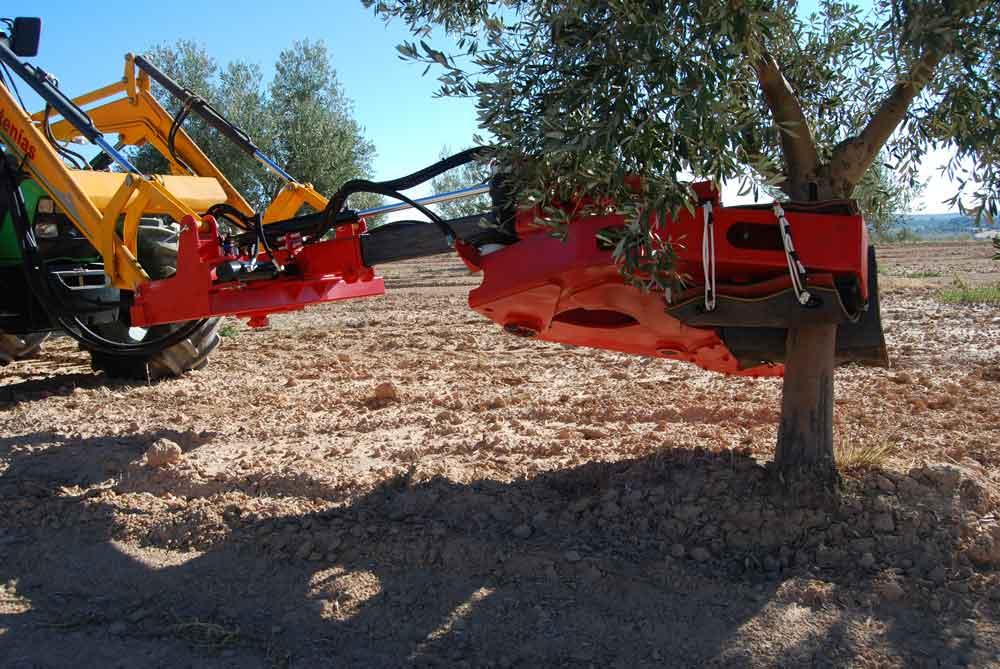 Maquinaria para olivar, vibrador. Fuente:estupina