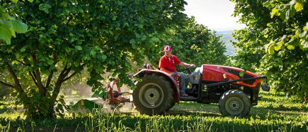 Tractores SAME: Frutteto Classic