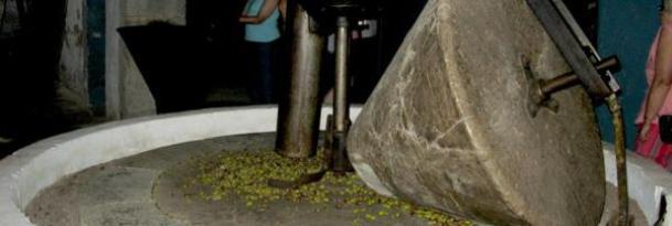 Maquinaria en la almazara: Molino antiguo