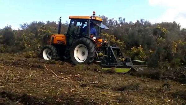 Tractor Renault Fructus 140 desbrozando