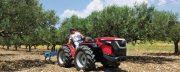 Tractores Valpadana:  fruteros y altamente versátiles