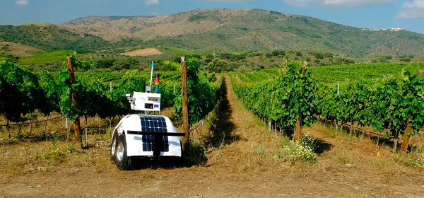 Robot Vinescout probado en Portugal