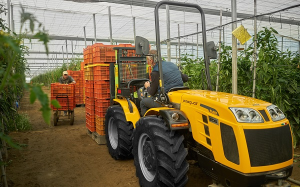 Tractor Pasquali EOS 5.60 AR