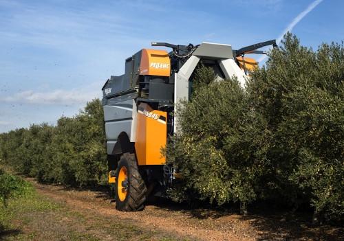 Cosechadora de olivar superintensivo CV5045