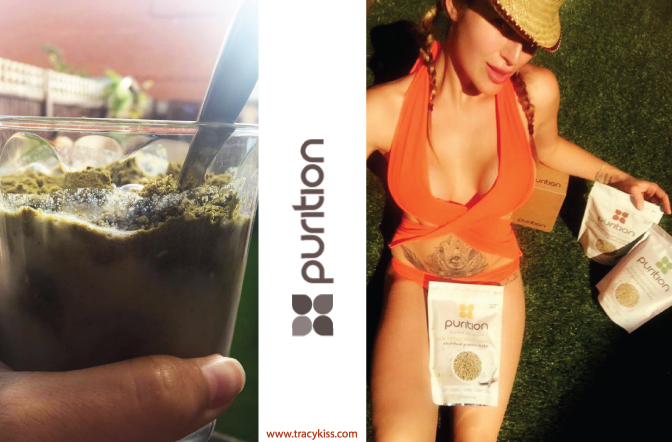 Purition Natural Wholefood Protein Shakes