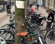 Stadsleven: De fiets  zal zegevieren