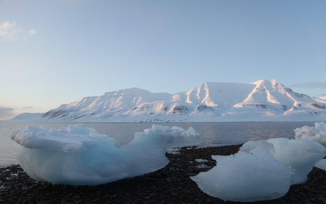 De wereldzadenbunker op Spitsbergen in videokunst