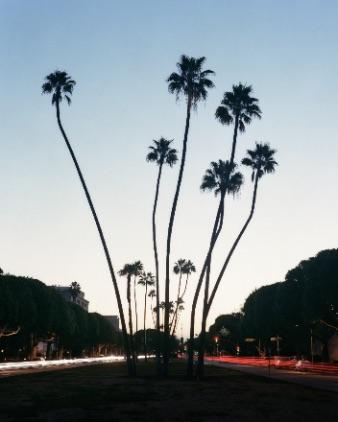 De lange, dunne iconen van L.A.