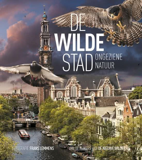 De stad in Spraakmakers: De wilde stad