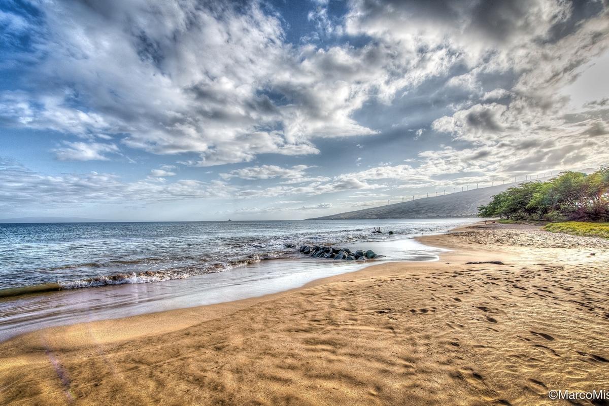 A Beach Or A Dream?