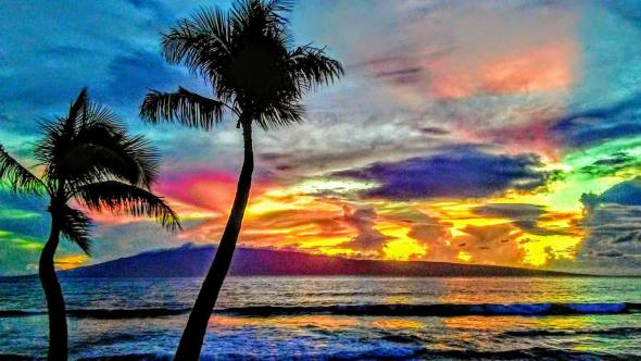 maui condo rentals by owner
