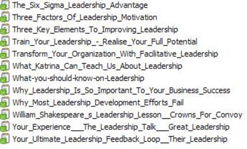 12 Leadership PLR Articles Vol. 4 + 25 FREE Reports