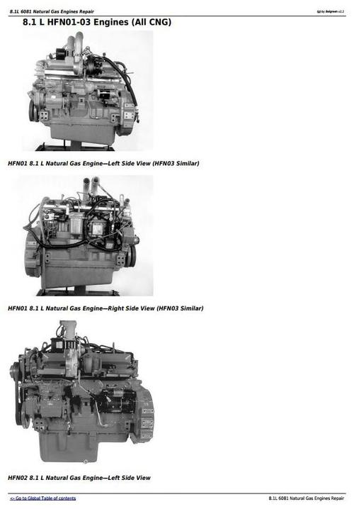Deer 8.1L 6081 Natural Gas Engines Technical Service