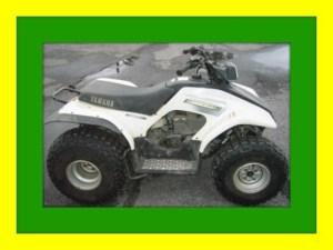 YAMAHA BREEZE 125 ATV 1989  2004 REPAIR SERVICE MANUAL  Download