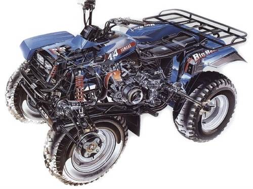 1987 Yamaha Warrior 350 Engine Diagram