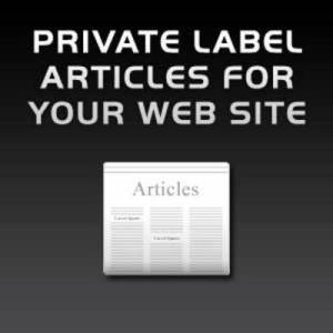 Tips Menggunakan artikel PLR