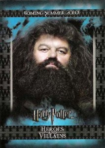 2010 Harry Potter Heroes and Villains Promo Card P2