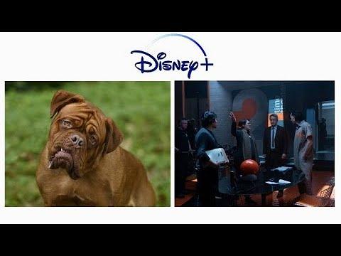 Disney+: lançamentos da semana (19 a 25 de julho)