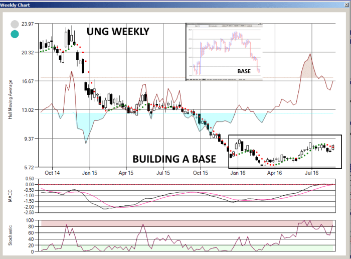 UNGWEEKLY