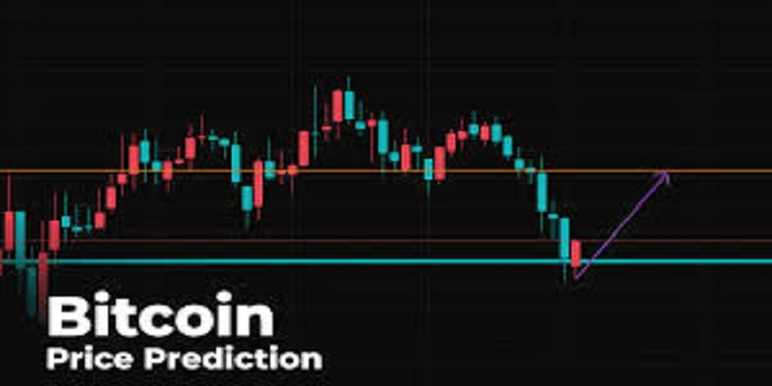 Bitcoin Price Predictions: Updated Guide For Beginners [2020]