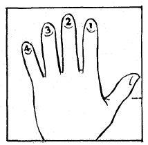 Baritone Ukulele Self Instructor, Page:06