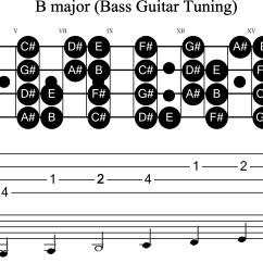 Bass Neck Diagram Vw Golf Mk2 Wiring Guitar Scale B