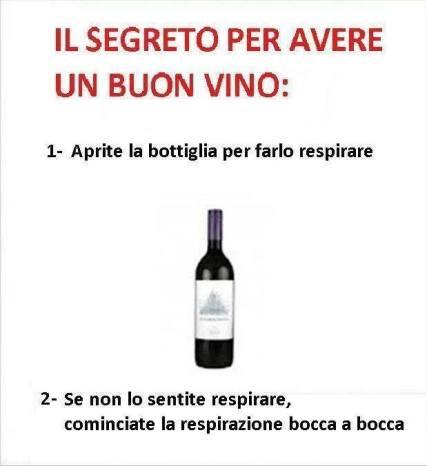 immagine-divertente-segreto-buon-vino
