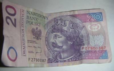 Idioma polaco