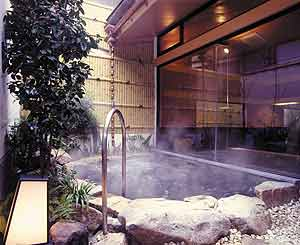 Vasca esterna (rotenburo), foto tratta dal sito internet dell'hotel