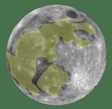 coniglio luna