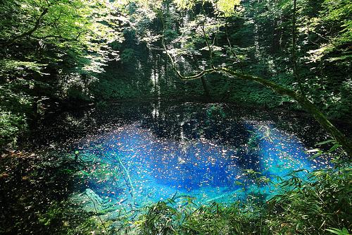 Aoike, lo stagno blu. Foto tratta da Flickr