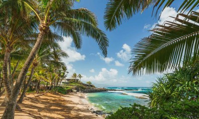 Hawaii Four Island Adventure Moderate Tour 2021 | Trafalgar