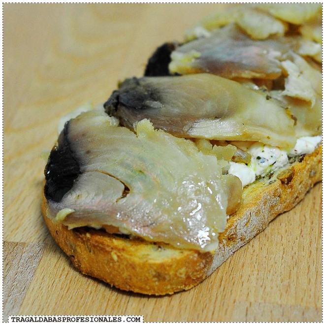 Tragaldabas Profesionales Labneh - Tostada atún marinado