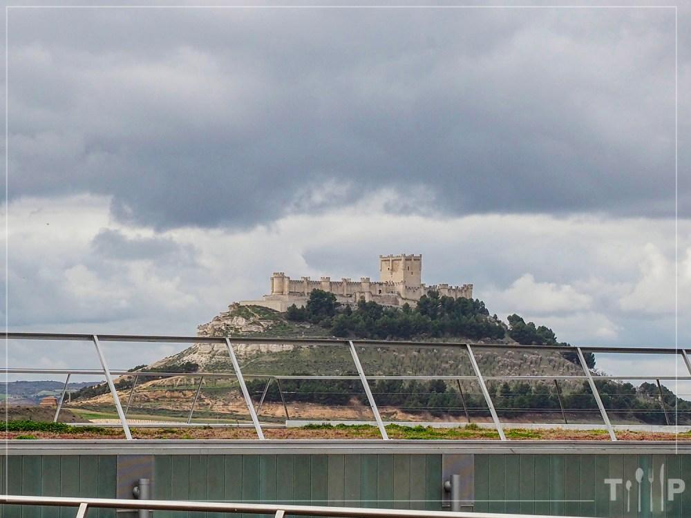 Castillo de Peñafiel - Pago de Carraovejas