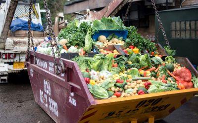 Impactul multidimensional al risipei alimentare