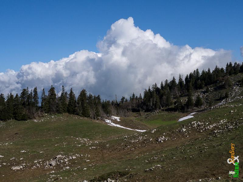 jura-grand-cret-eau-paysage-nuage (1)
