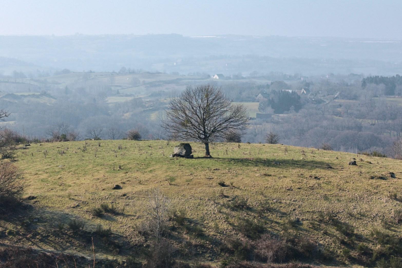 Le dolmen de la Coustie